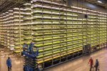 Vertical Farming Market Expected to Reach $5.8 Billion by 2022
