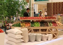 Turkmenistan Aims for Self-Sufficiency in Agricultural Products