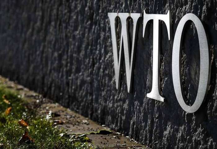 Turkmenistan Studies International Experience on WTO Membership