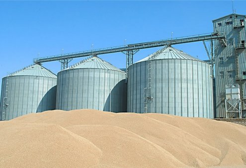 Turkmen Grain Processing Enterprise's Revenue Exceeds 20 Million Manats