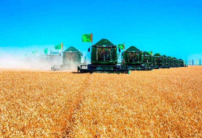 Turkmenistan to Make Immediate Payments to Farmers For Their Harvest