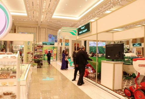 What are Legal Guarantees of Entrepreneur in Turkmenistan?