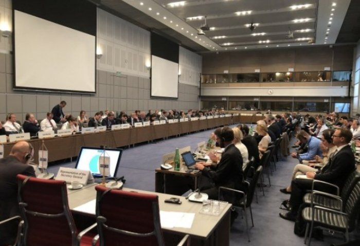 Turkmenistan Made Statement on CIS Summit Outcomes at OSCE Meeting