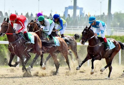 Turkmenistan to Establish Altyn Bedew Betting Company