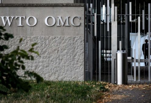 Ashgabat Attends Online Session on WTO Accession