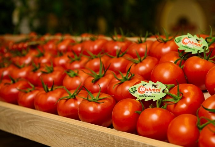 USAID Promotes Central Asian Horticulture Exporters