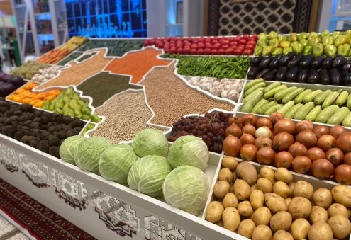 Turkmen Private Sector Increases Agricultural Production
