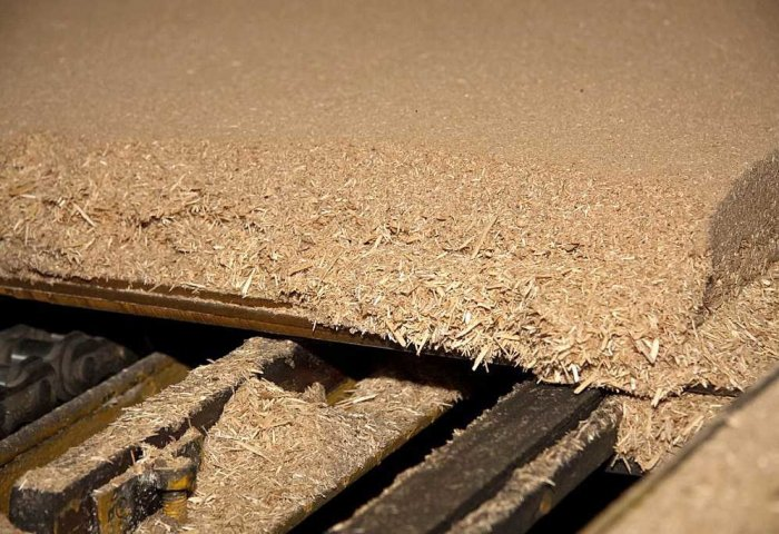 Agaýana Enterprise Intends to Export Particleboard