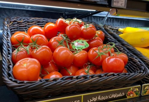 Turkmenistan's Ýigit Aims to Harvest 12,500 Tons of Tomatoes
