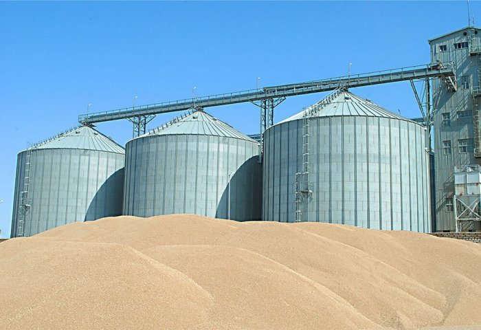 World's Largest Grain Storage Facility to Appear in Turkmenistan