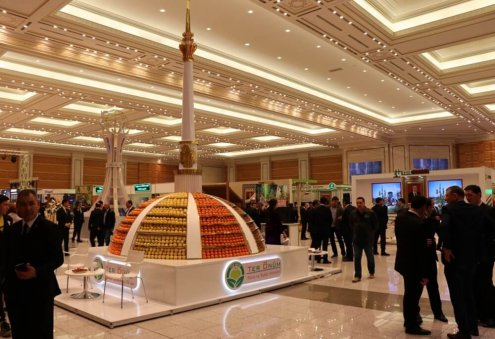 What are the rights of shareholders in Turkmenistan?